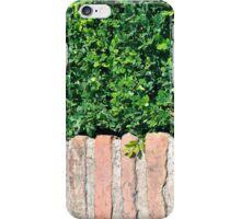 Leaves Over Bricks iPhone Case/Skin