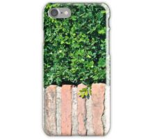 Leaves Over Bricks iPhone Case/Skin