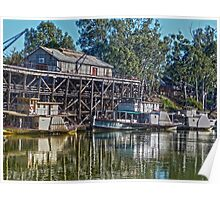 Paddle Steamers Poster
