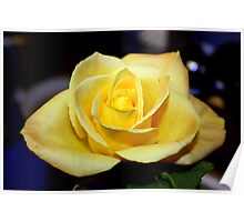 One Yellow Rose Poster