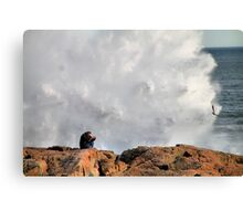 'Getting the Shot' Canvas Print