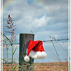 Bush Christmas by Tracie Louise
