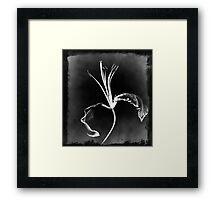 Stylized Framed Print