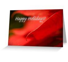 Poinsettia dreams - holiday card Greeting Card