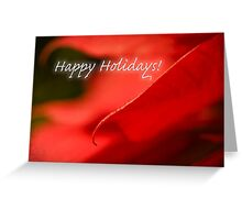 Poinsettia dreams - holiday card Greeting Card