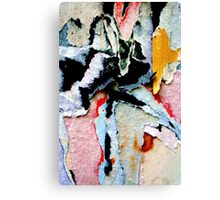paper torn presents swanlake Canvas Print