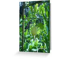 A lemon surrounded by exotic plants Greeting Card