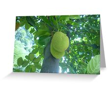 Stnky exotic fruit Greeting Card