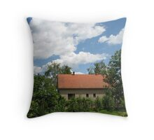 Memory on Spring 2008 Throw Pillow