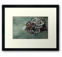 """""""Dreamily Roses ..."""" Framed Print"""
