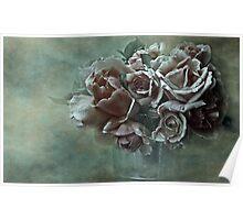 """Dreamily Roses ..."" Poster"