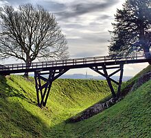 The Way In At Old Sarum by Clive