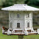 Bird Mansion by AnnDixon