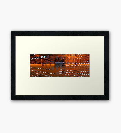 Coralita View #2 Framed Print