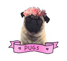 we love pugs by Bujjoh
