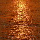 Reflections of a golden sun - Reflecciones de un Sol dorado, Puerto Vallarta, Mexico by PtoVallartaMex