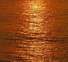 Reflections of a golden sun - Reflecciones de un Sol dorado, Puerto Vallarta, Mexico by PtoVallartaMex