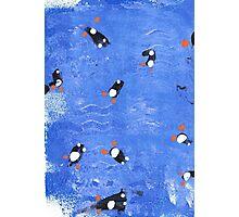 Williams swimming penguins Photographic Print
