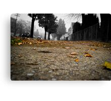 The golden road into oblivion Canvas Print