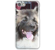 Akita Dog iPhone Case/Skin