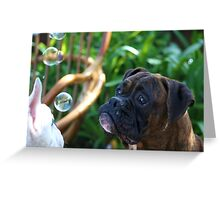 Boxer Dogs and Bubbles Greeting Card