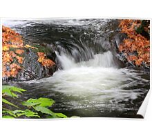 Autumn Leaves at Sweet Creek Falls Poster