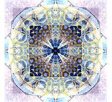 11_25_11_12_37 Photographic Print