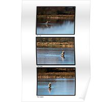 Fly Fishing Triptych with White Background Poster