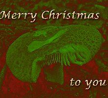Christmas Card - Magic Mushroom by MotherNature