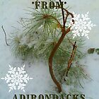 Adirondack Mountain holiday card...2011 by linmarie
