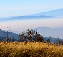 Blue mountains by Vasil Popov