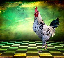 Rooster  by Debra Fedchin