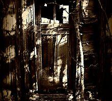 crow's door in the grandview woods by nessbloo