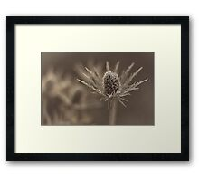Beware of Sharp Edges! Framed Print