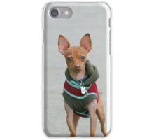 Chihuahua dog iPhone Case/Skin