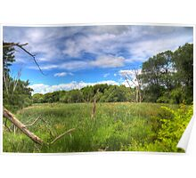 Waterfront Trail HDR I  Poster