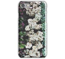 Succulent 03 iPhone Case/Skin