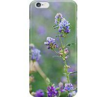 Purple Haze iPhone Case/Skin