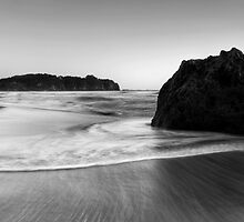 Smoothing out the Beach by Michael Treloar