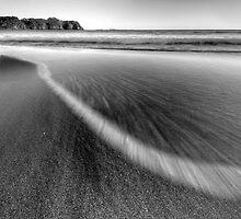 Rush by Michael Treloar