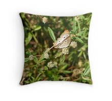 White Peacock Butterfly - Everglades National Park Throw Pillow