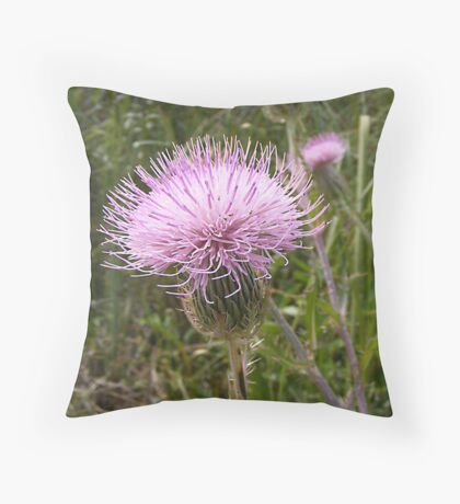 Everglades wildflower Throw Pillow