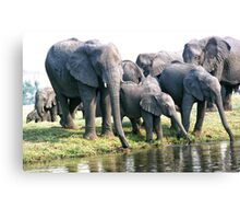 The Family That Drinks Together... Canvas Print