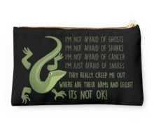 Snakes! where are their arms and legs!!?  Studio Pouch