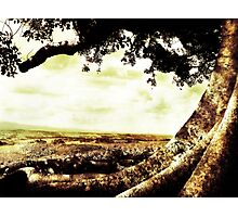lookout Photographic Print
