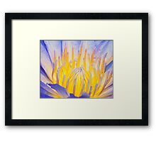 Electric, Water Lily Framed Print