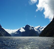 Milford Sound NZ by Alison Murphy
