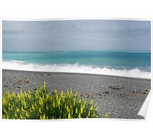 Coastline on the way to Picton NZ Poster