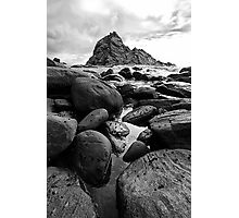 Barnacles Photographic Print