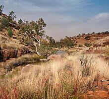 Tupul landscape, central Australia by Roger Neal